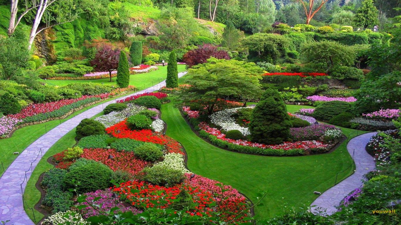 Landscaping Designs garden design: garden design with exterior : amusing landscaping